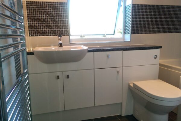 Bathroom Sink with Cabinets & Toilet Install