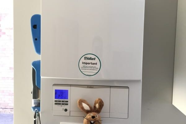 Vailliant Boiler with Rabbit